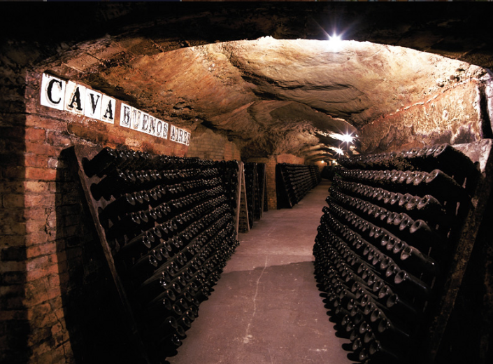Cava at Codorniu Cellars in Spain