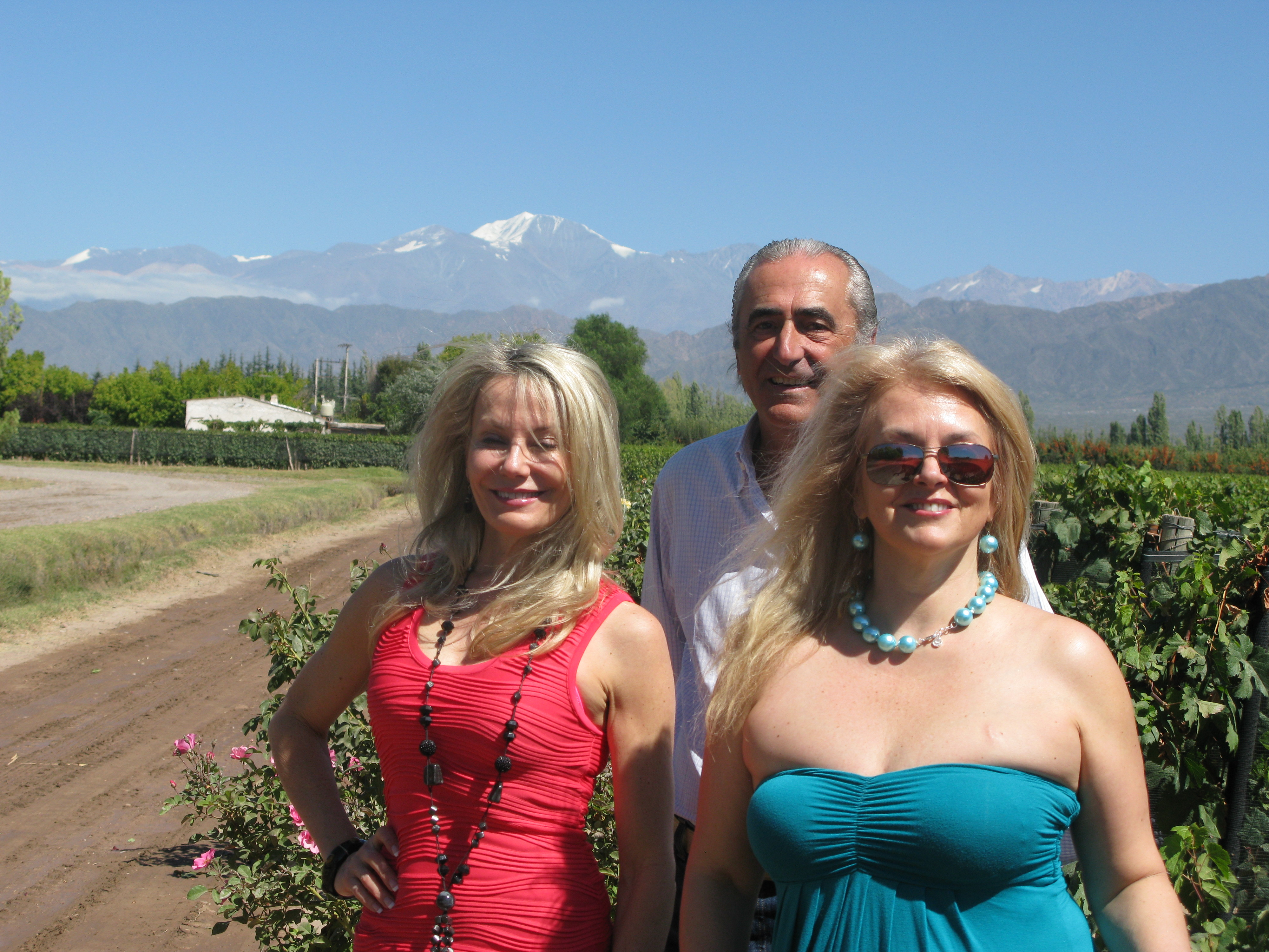 The Andes,Cordon del Plata peak makes a stunning back drop to the Fabre Montmayou vineyards.