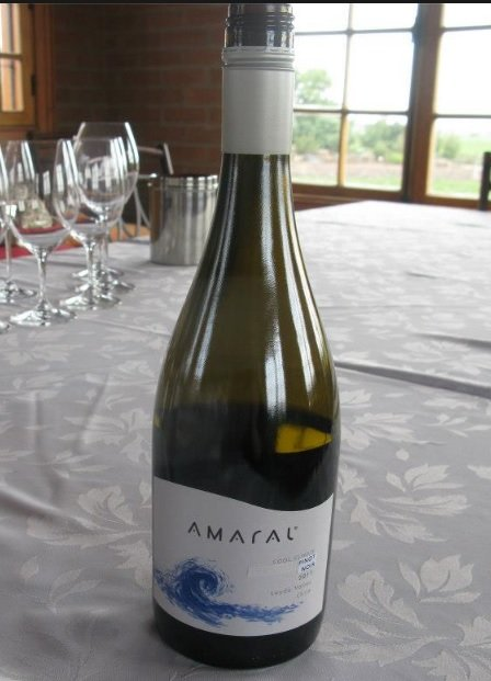 Available at the LCBO Amaral Sauvignon Blanc 2011, $14.45