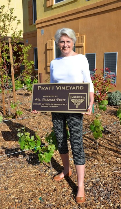 Debi Pratt Vineyard