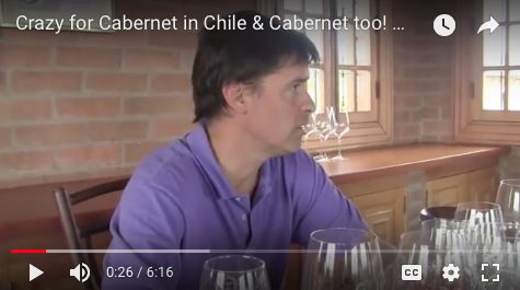 Crazy for Cabernet in Chile & Cabernet too! MontGas Winemaker Santiago Margozzini The Wine Ladies TV