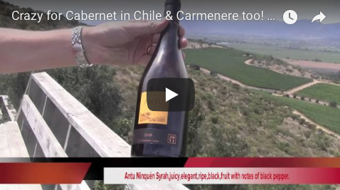 Crazy for Cabernet in Chile & Carmenere too! Ninquen Mountain Vineyard, Chile The Wine Ladies TV