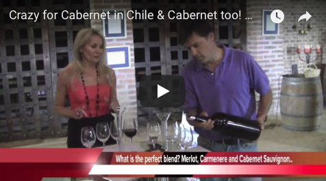 Crazy for Cabernet in Chile & Cabernet too! MontGas Wine making school The Wine Ladies TV
