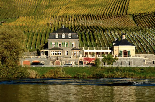 he stunning Mosel Valley, with the severe slopeswhere Weingut Dr. Loosen is located.